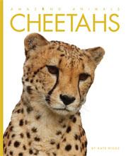 Aa_cheetahs_cover